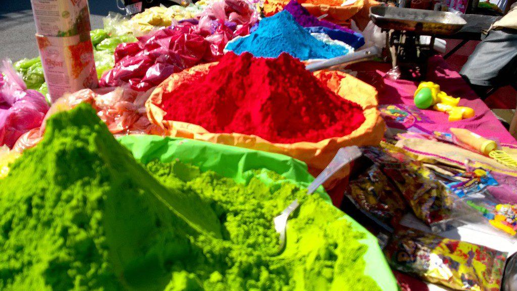 Holi at Rishikul Yogshala