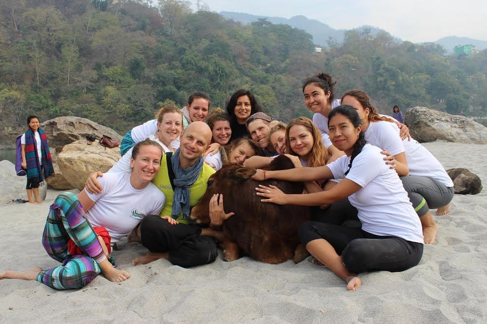Yoga with cow at ganga beach