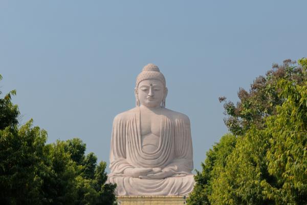 buddha purnima rishikul yogshala