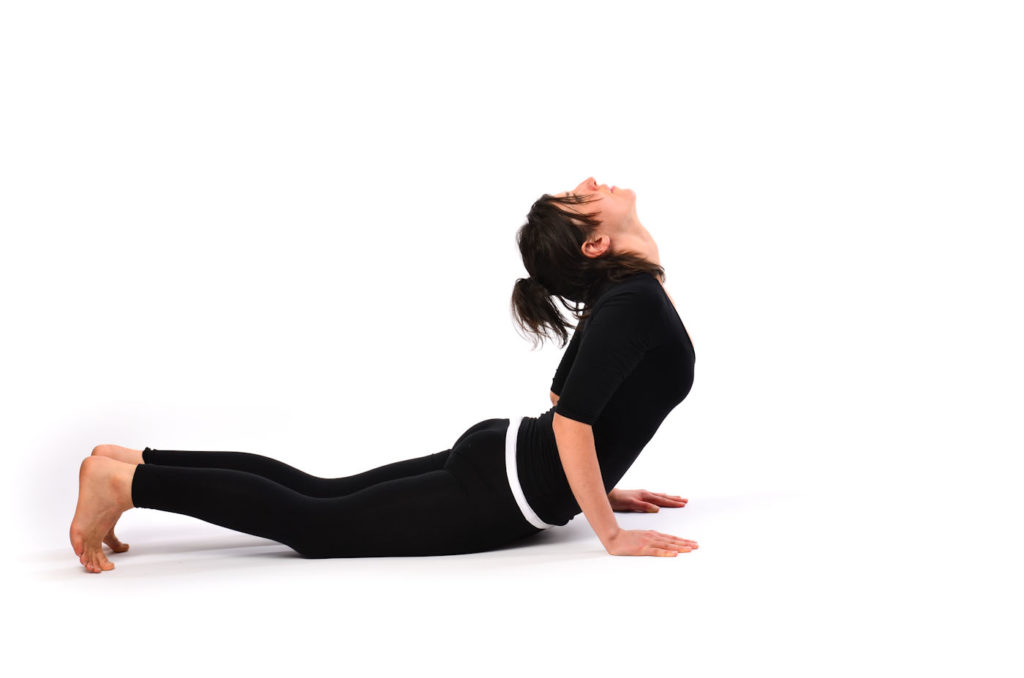 Bhujangasana or the Cobra