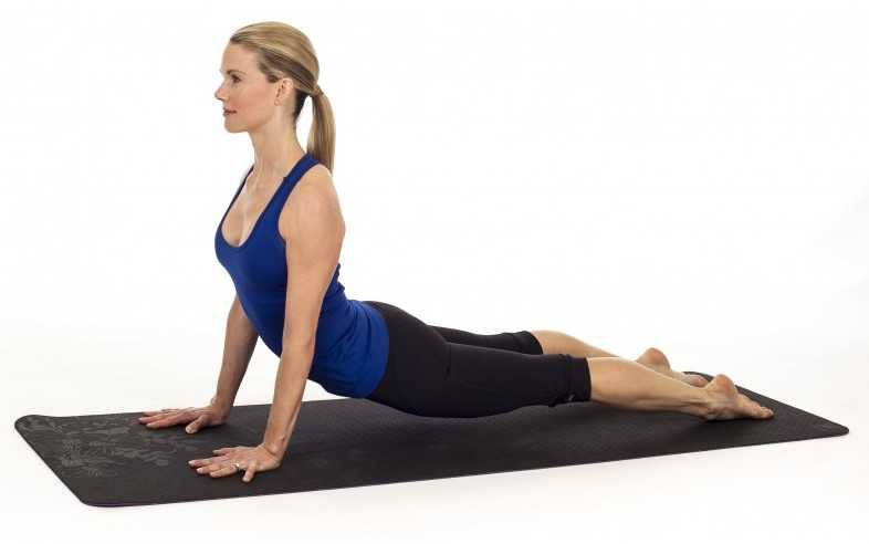 Upward Facing Dog Pose (Urdhva Mukha Svanasana)