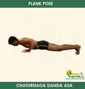 Plank Pose (Chaturanga Dandasana)