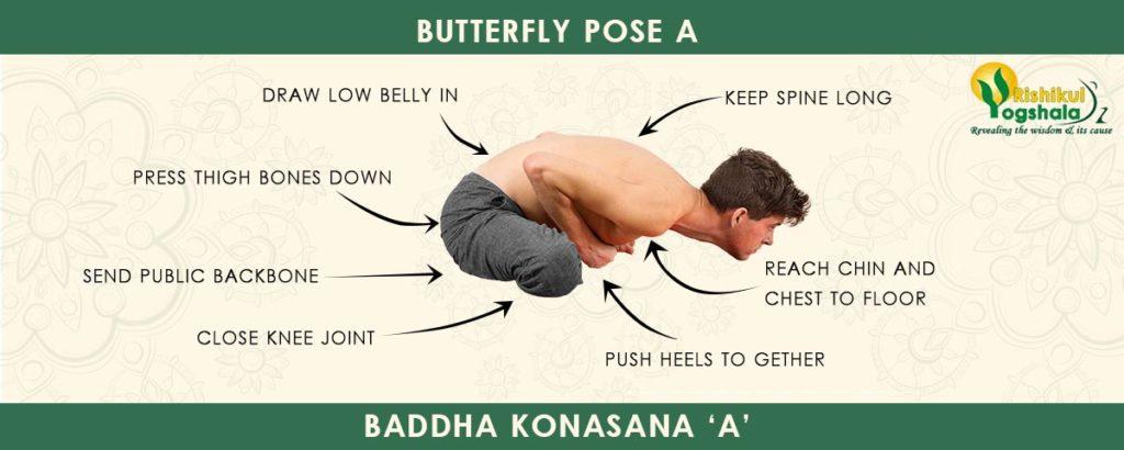 Baddha Konasana (Butterfly Pose)