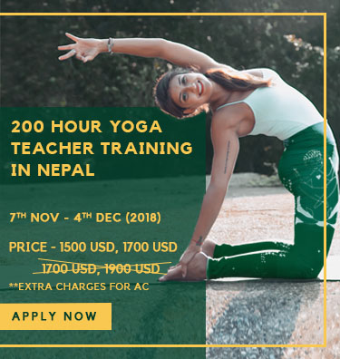 500-hour-yoga-yecher-training-copy