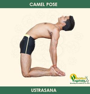 Camel Pose (Ustrasana)
