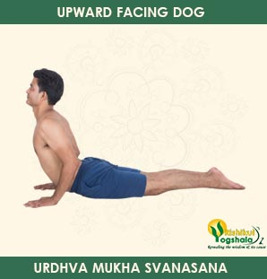 upward-facing-dog-pose-1
