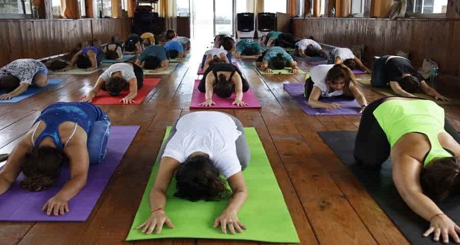 the best yoga teacher training in india