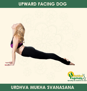 upward-facing-dog-pose-1