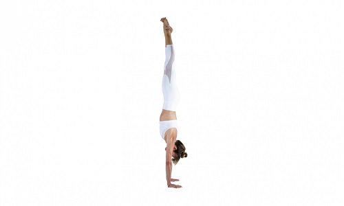 Downward Facing Tree Pose (Adho Mukha Vrksasana)
