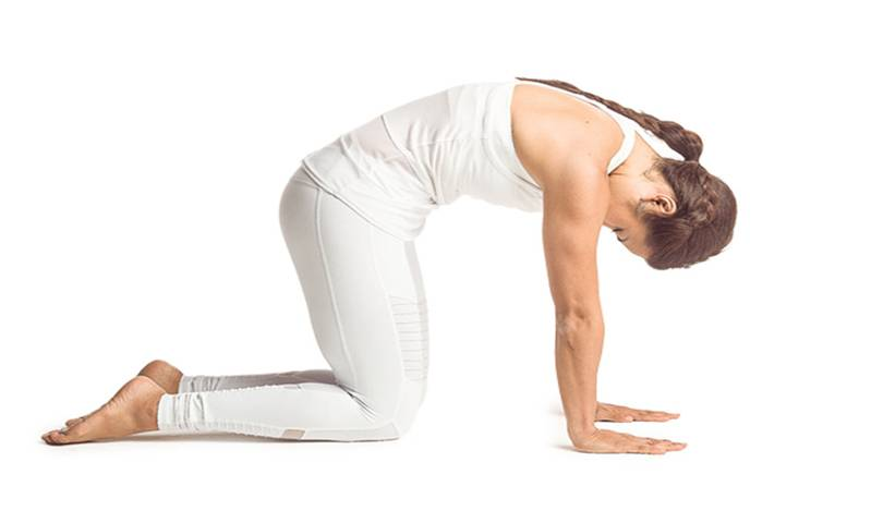 Yoga Is Beneficial For Your Lungs