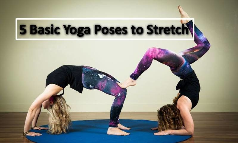 5 Basic Yoga Poses to Stretch