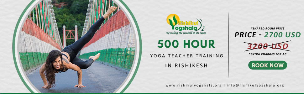 500 hour offer banner Rishikesh