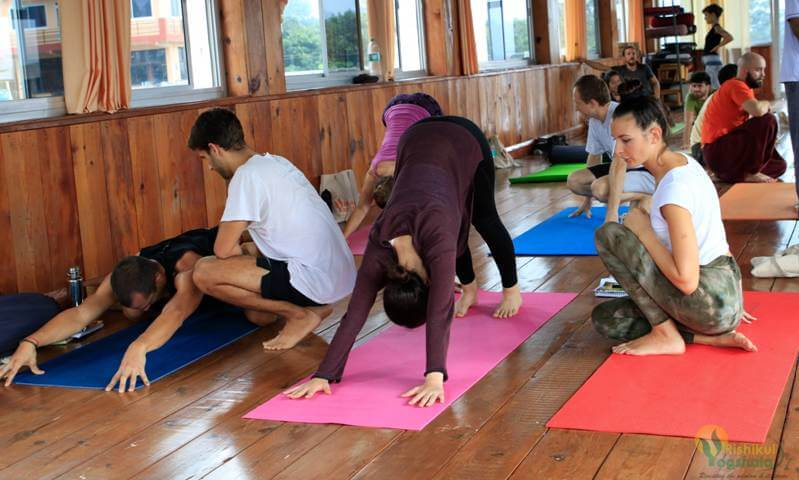 Hatha Yoga Teacher Training School